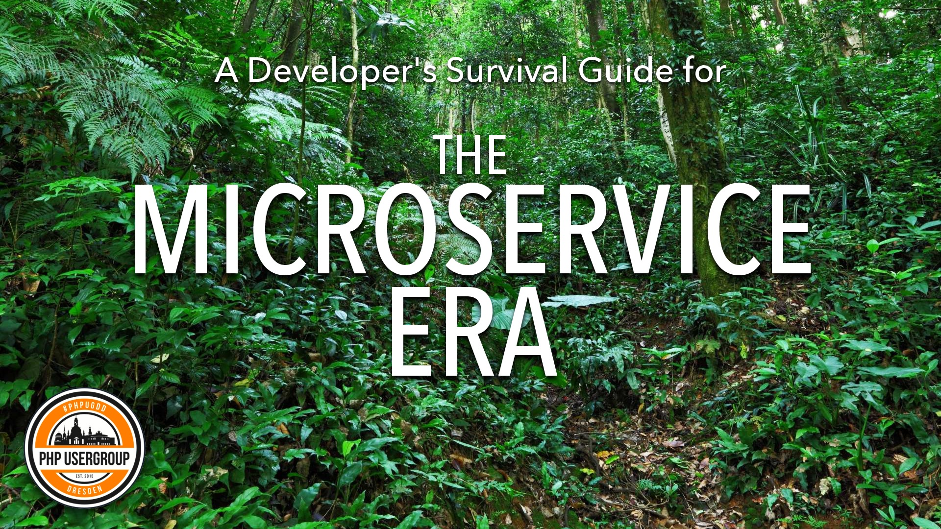 A Developer's Survival Guide for the Microservice Era